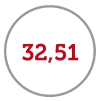 32,51 icon